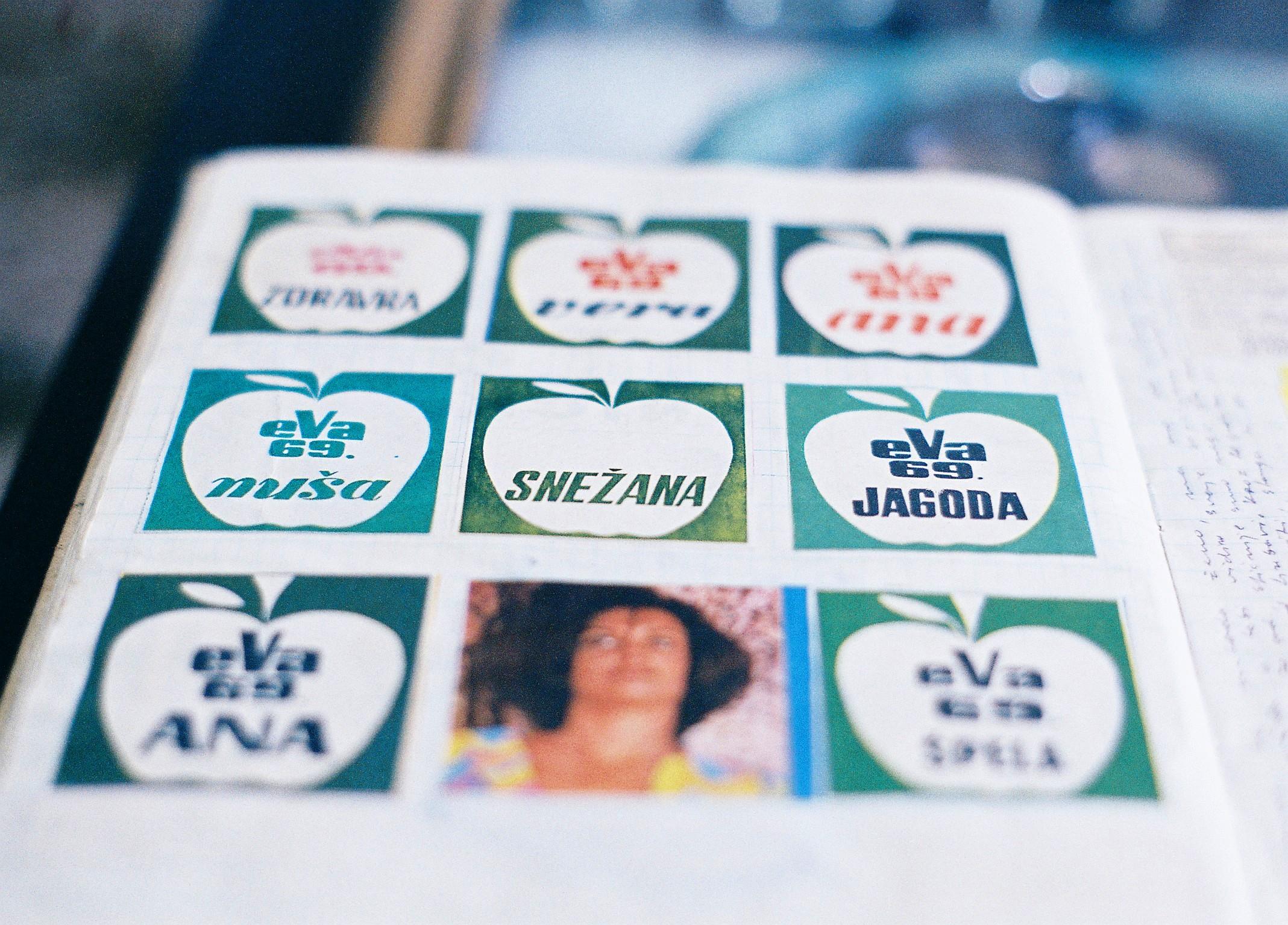 pigoza12